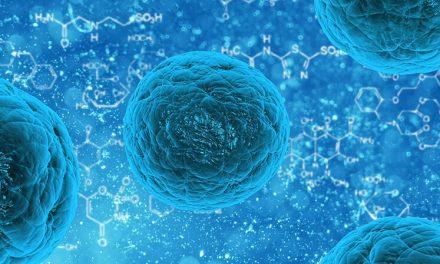 Oberflächenbeschichtung aus Bakterienzellulose entwickelt