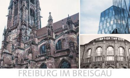 Kurs am Humanpräparat vom 15./16. November in Freiburg